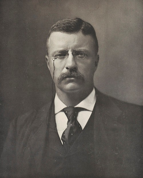LC-DIG-PPMSCA-36063:   President Theodore Roosevelt, by The Perry Pictures, October 11, 1901.   Courtesy of the Library of Congress.