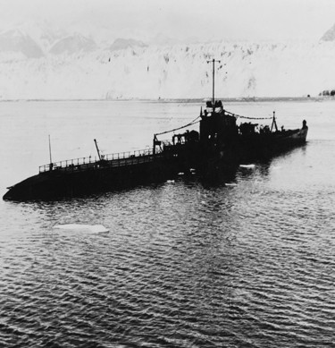 "Compiled like an encyclopedia, the <a href=""https://www.history.navy.mil/research/histories/ship-histories/danfs.html"">Dictionary of American Fighting Ships (DANFS)</a> is a historical listing of U.S. naval ships. Learn about the DANFS ship of the week, <a href=""https://www.history.navy.mil/research/histories/ship-histories/danfs/p/phoenix-iii.html""> <i>Phoenix</i> (CL-46). </a><a></a>"