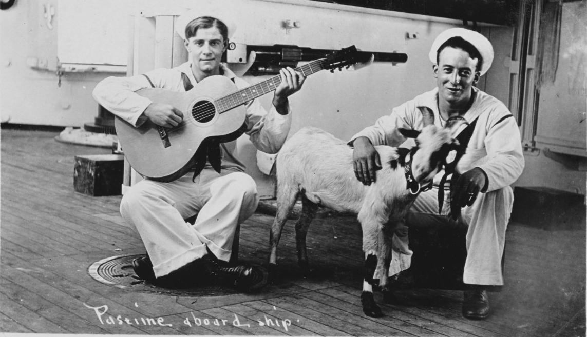 Photo #: NH 106079  Sailors with Guitar and Goat
