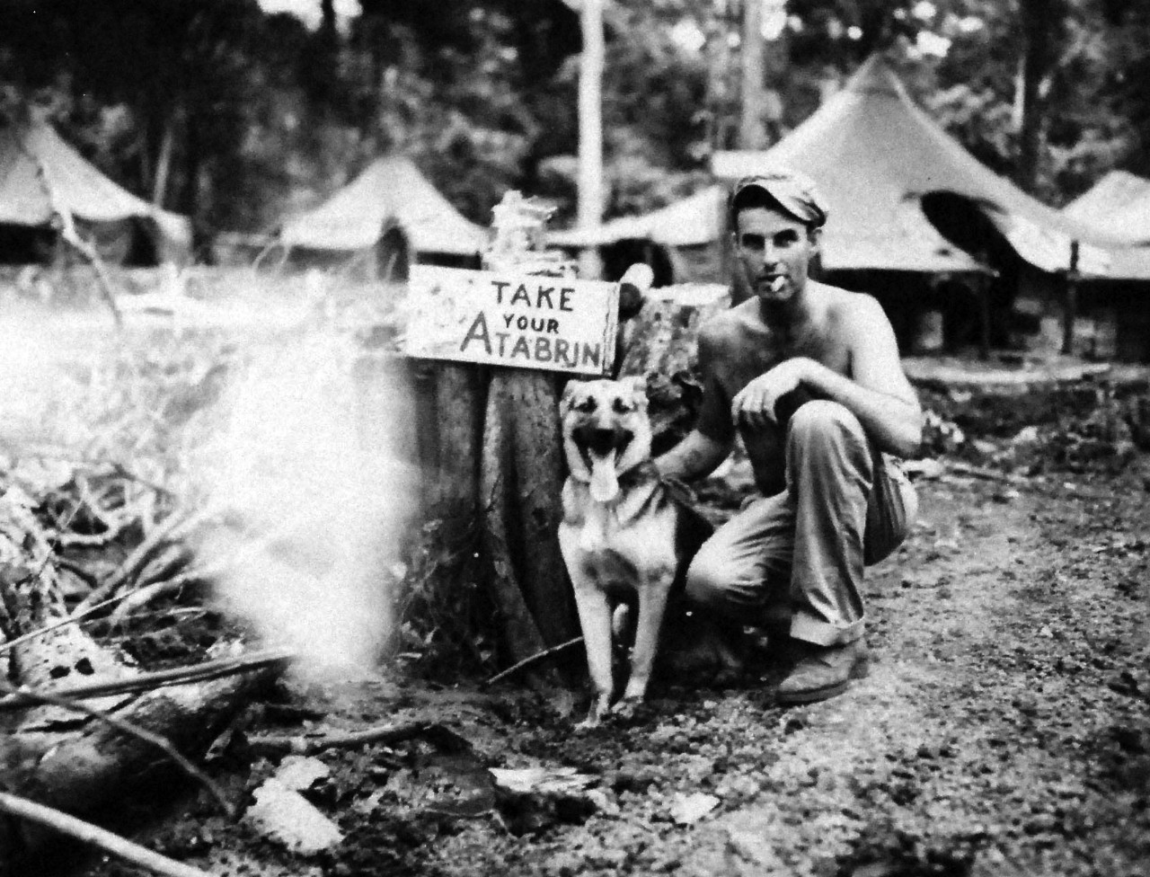 "127-GW-966-77356:  Battle of Cape Gloucester, New Britain, December 1943-January 1944.   ""Japanese sentry who joined Marines.""   ""Nipper,"" a Japanese sentry dog, who voluntarily joined the Marines on Cape Glouchester, poses with Marine Master Technical Sergeant George E. Ausman, who had been a Marine since 1926.   Photographed by Sergeant G.F. Koepplinger, 10 February 1944.   Official U.S. Marine Corps Photograph, now in the collections of the National Archives.   (2014/7/9)."