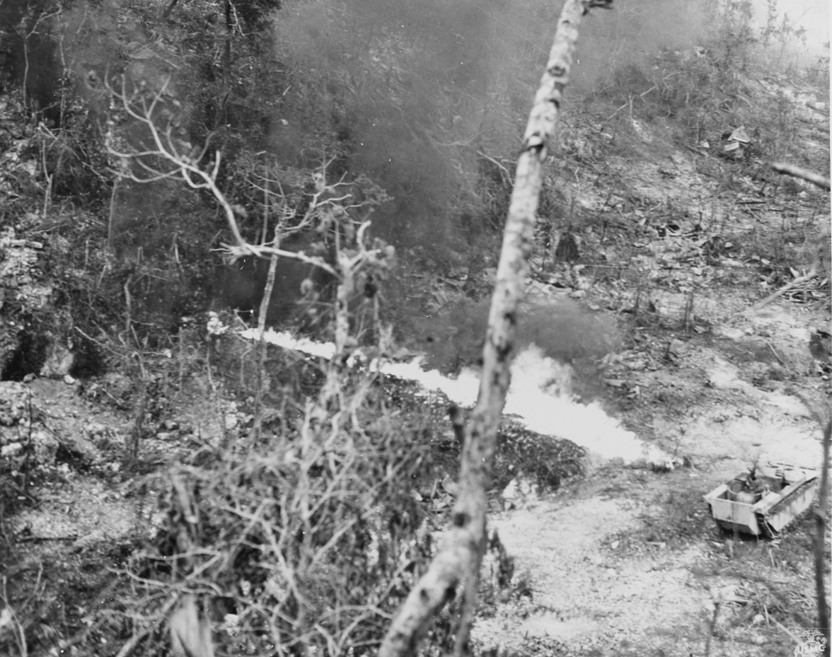 Photo #: NH 104297  Peleliu Invasion, September 1944 past