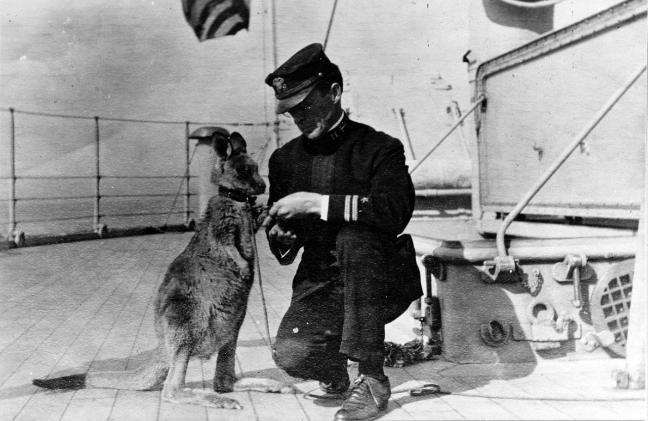 Lt. John E. Lewis meets a kangaroo donated by the citizens of Sydney to Connecticut during the ship's visit to that port, 20–27 August 1908. The crew adopted the kangaroo as their mascot. (Naval History and Heritage Command Photograph NH 50477)