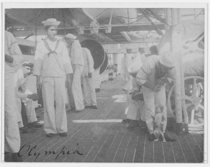 One of the ship's cats presents a playful attitude alongside some curious crewmen, c. 1898. (George Grantham, Cyanotype print, U.S. Navy Photograph NH 43206, Photographic Section, Naval History and Heritage Command)