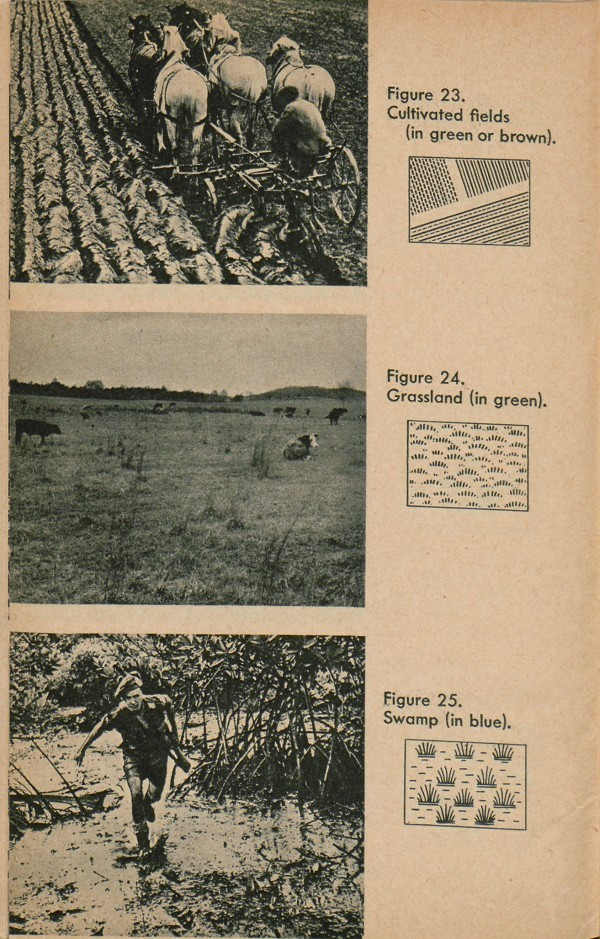 Figure 23: Cultivated fields. Figure 24: Grassland. Figure 25: Swamp.