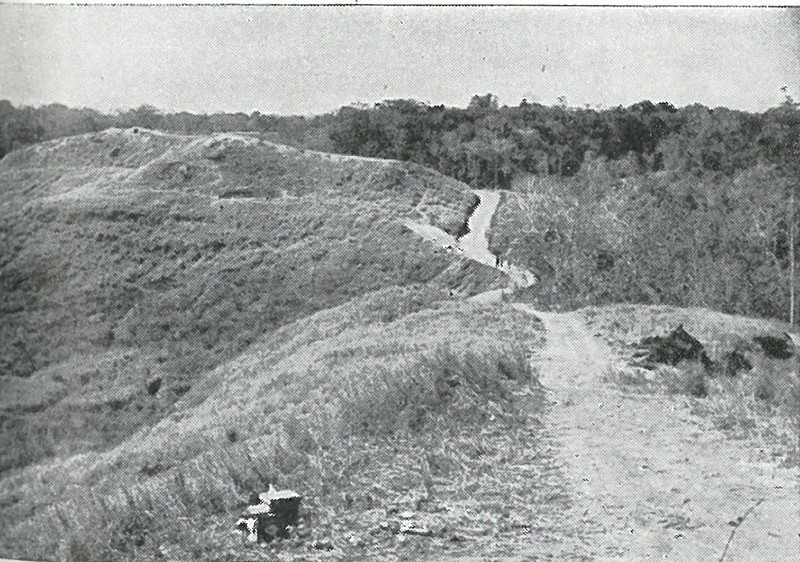 WHERE THE TIDE TURNED - Edson's final position on the Ridge, as viewed from Bailey's intermediate position just southward. If this last line had been carried by the enemy, Guadalcanal would probably have been lost.