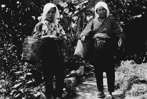 Sericulture - Mother and daughter on the way to pick mulberry leaves for silkworms.
