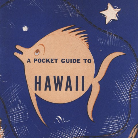 Cover image of Pocket Guide to Hawaii.