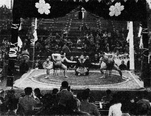 "We were puzzled by their sports - such as ""Sumo,"" their wrestling, which looked to us like nothing more than fat men pushing each other around with funny ceremonial gestures ..."