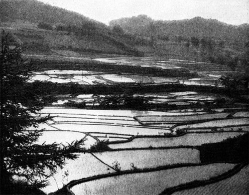 Practically everything we saw in Japan gave us the idea that it was a peace-loving little country where every inch of good soil had to be tilled to supply the nation's food ...
