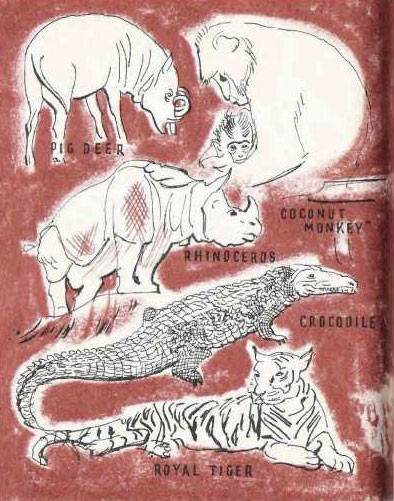 Illustration of animals - pig deer, coconut monkey, rhinoceros, crocodile, and royal tiger.