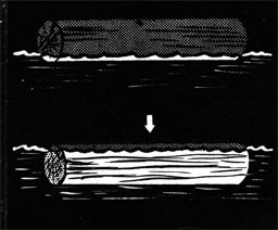 Drawing of a dry log above the wate rline and a wet log beneath the water.