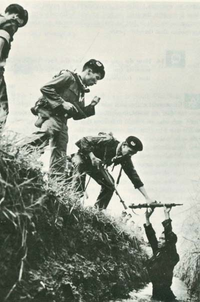 Image - South Viet-Nam's terrain favors guerrilla action. Here Vietnamese troops flush out a Viet Cong insurgent.