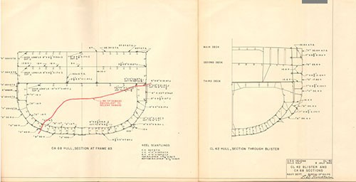 Plate III: CL 42 Blister & CA 68 Sections